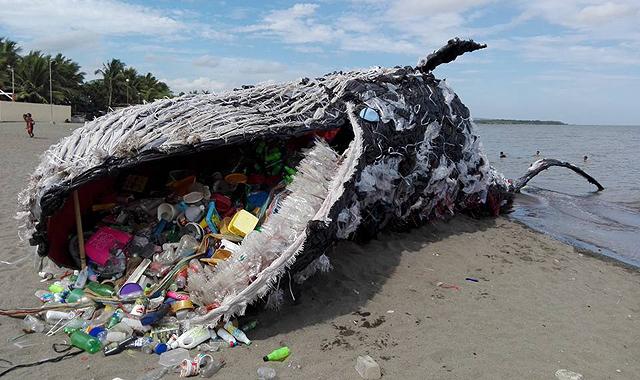 műanyag egy bálna hasában